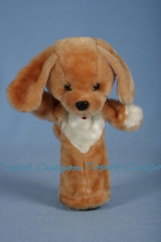 Собака «Би-ба-бо»